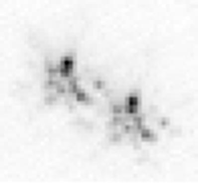 这是一张长时间曝光某颗星星得到的照片,反映了在一段时间内星星在望远镜的视野里的位置有变化。我们平时用业余望远镜也可以看到出现在目镜中的星星有些晃动,那多半是你的支架不稳,提醒你该加钱升级三脚架了(图片来源:维基百科词条-视宁度)