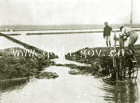 1897年德国侵占青岛后,将环胶州湾盐田划入其租界之内,并改称胶澳盐场。此为当时城阳一带盐田 图片来源:青岛档案馆