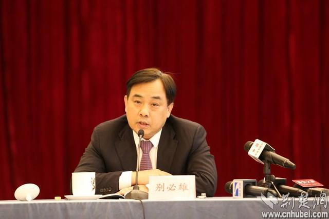 【谷歌竞价】_湖北省政府秘书长别必雄被查,主政荆门时的大秘两月前坠亡