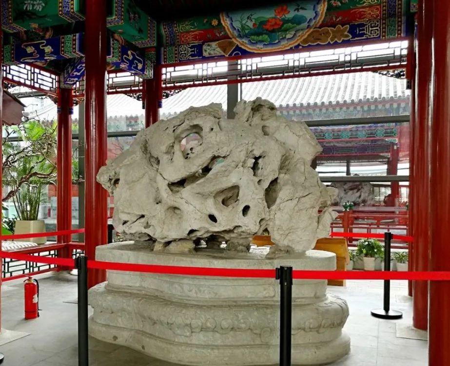 """圆明园遗石""""青莲朵"""",原在中山公园,今藏北京中国园林博物馆"""