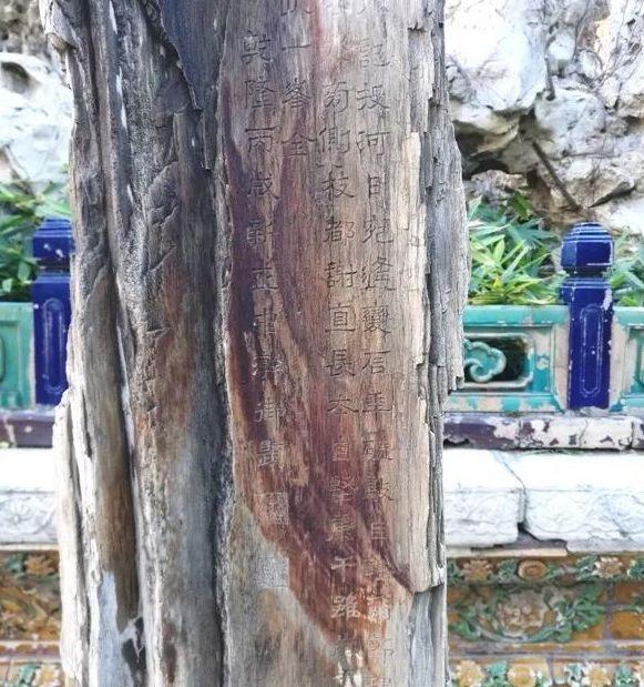 故宫御花园木化石乾隆御题诗刻