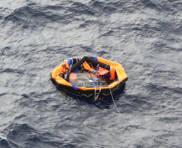 【海南网站优化】_载43人和5800头牛货轮在东海沉没 一船员拼死抓紧牛后幸存