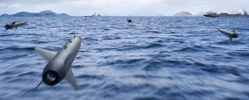 德國海軍采購新反艦導彈 由德國和瑞典聯合研發