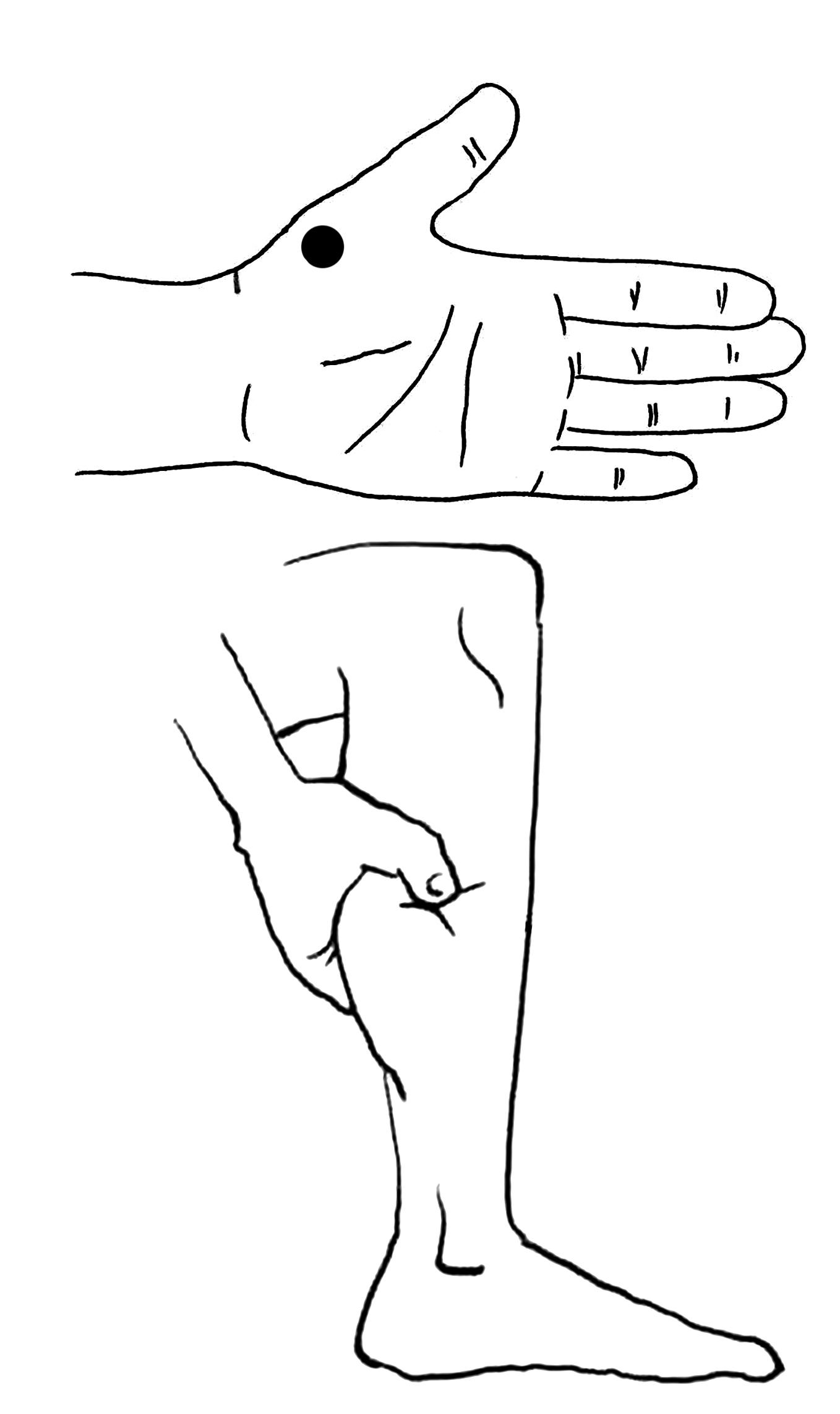 缓解咳喘按压两穴 具体方法看这里