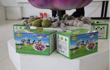 紫皮大蒜精品礼盒
