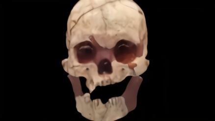 广西发现16000年前的人头骨化石