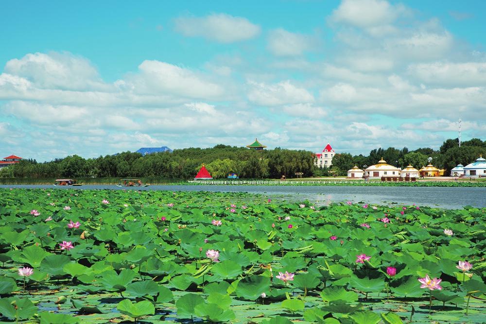 万亩荷花园成为查干湖最靓的风景线。