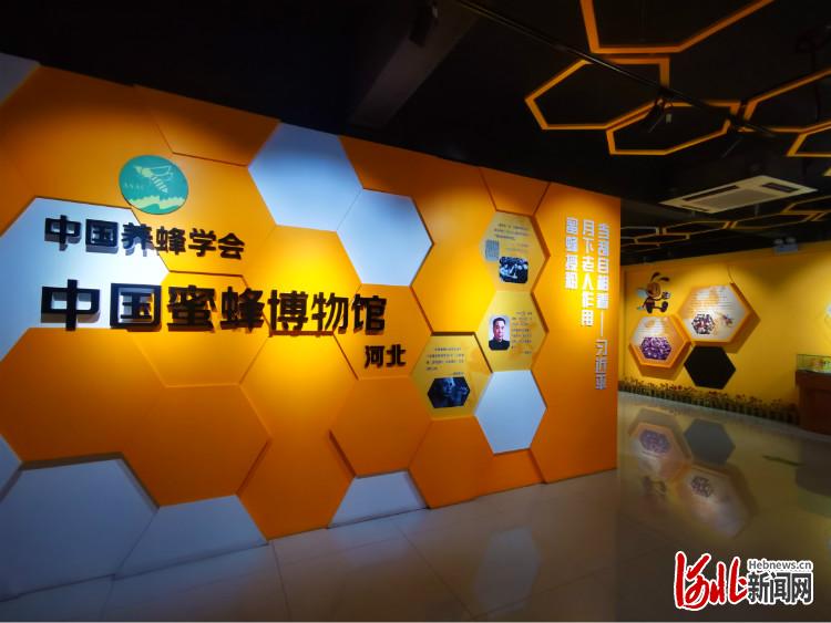 蜜蜂博物馆 王海庭摄