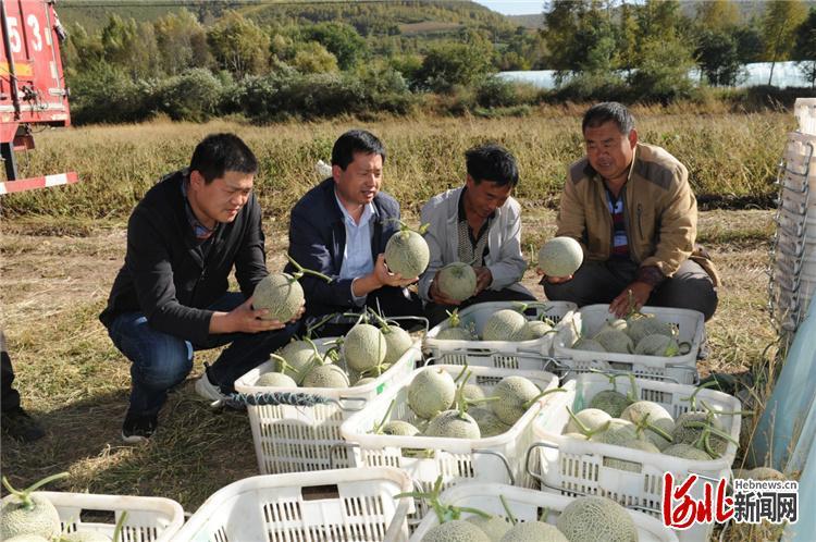 郭安治(左二)正在和村民商议玫珑瓜销售事宜。通讯员王建军摄