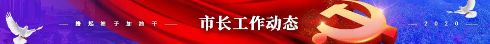 广东省各地市长工作动态栏目列表