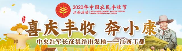 梦舞蓝天 2020 中国航空产业大会在瓷都景德镇开幕