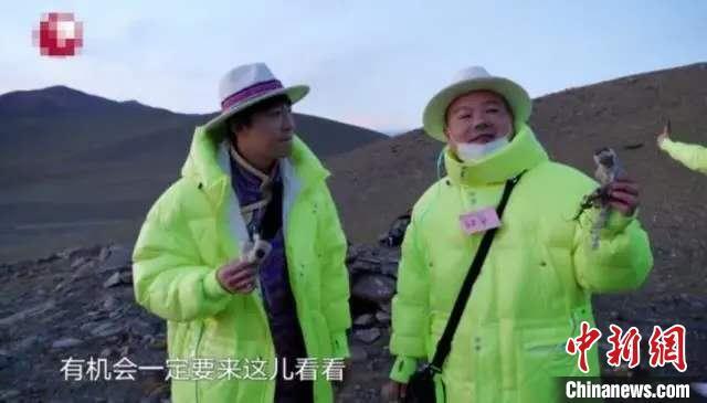 """【网络营销】_官方回应""""综艺嘉宾采摘西藏珍稀植物"""":已介入调查"""