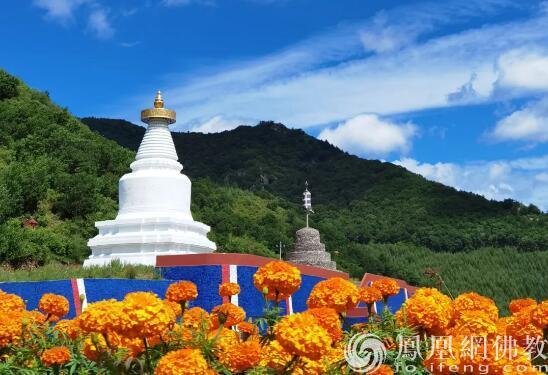 图片来源:凤凰网佛教 摄影:杨静影