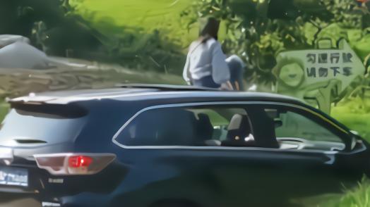 野生动物园自驾游女生坐车顶,园方:已介入处理
