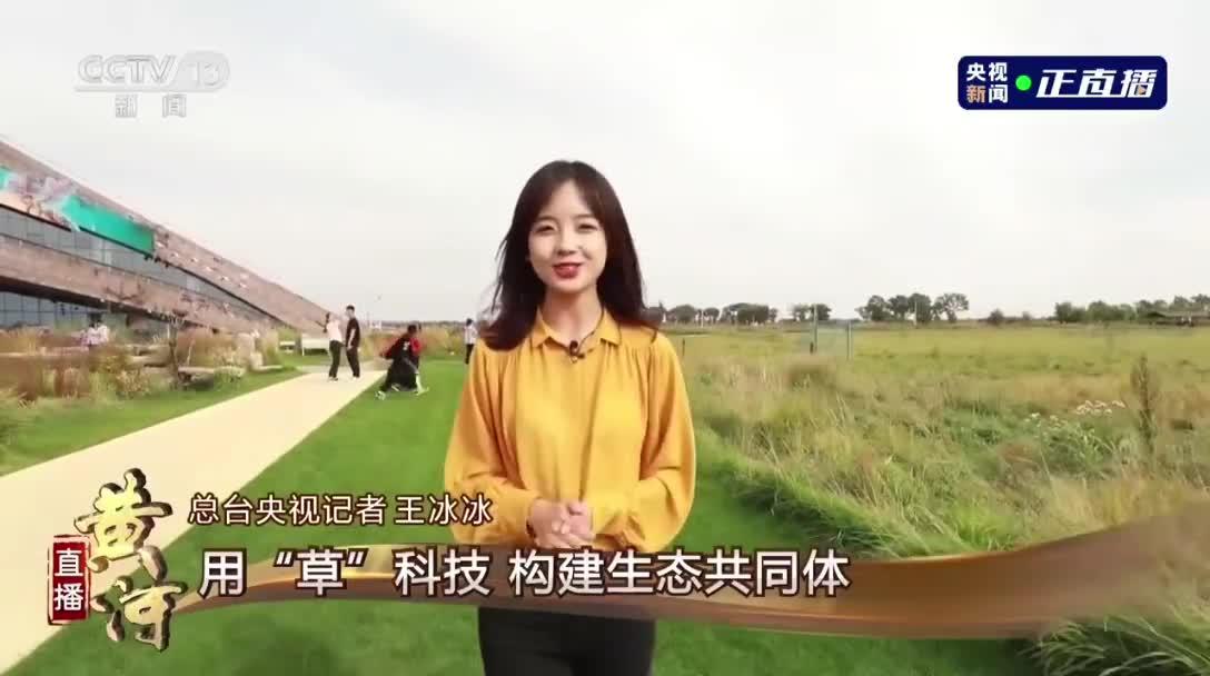 央视甜妹记者王冰冰太可爱了!年轻人还是要多看新闻啊