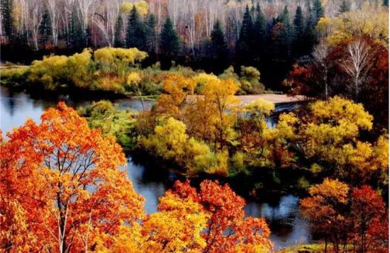 伊春上甘岭溪水国家森林公园