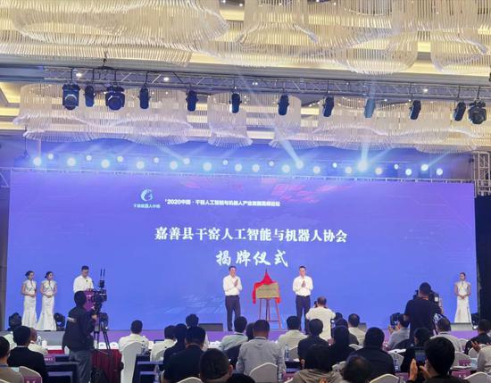 浙江嘉善举办人工智能与机器人产业高峰论坛