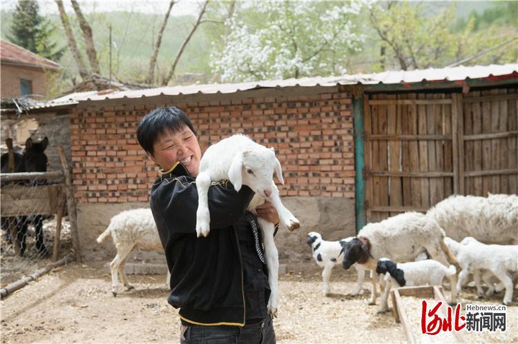 图为通过发展扶贫产业脱贫致富的八顷村村民邢海华。河北日报记者田明摄