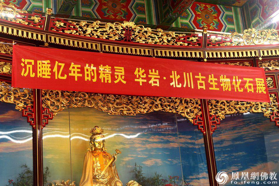 活动现场(图片来源:凤凰网佛教 摄影:重庆华岩寺)