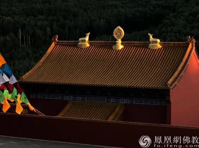 图片来源:凤凰网佛教 摄影:曹立君