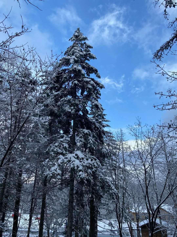 亚布力滑雪旅游度假区喜迎初雪,新雪季即将到来
