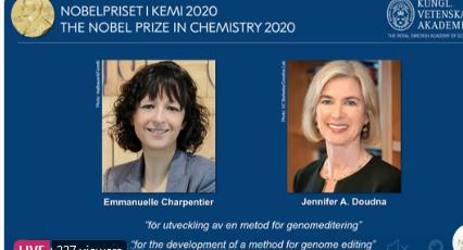 【天津程雪柔公交车诊断】_2020年诺贝尔化学奖揭晓!由两名女性科学家获得