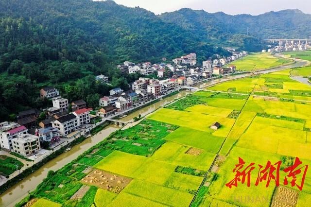 《金水青山》邹声爽拍摄于冷水江市三尖镇