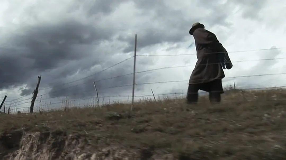 季羡林:来世与母亲相会,趴在她脚下的仍然是这条老狗