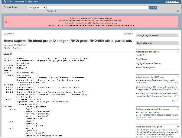 """今年9月26日,江西省儿童医院所提交的该变异基因特异性核酸序列在美国国立生物技术信息中心的""""GenBank数据库""""进行了公布,核酸序列号为MN845955。 江西省儿童医院供图"""