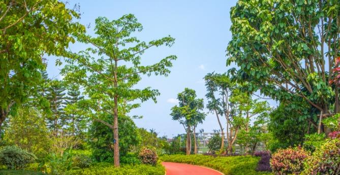 感受青岛的宁静安逸,和湿地来一场悠闲惬意之约!