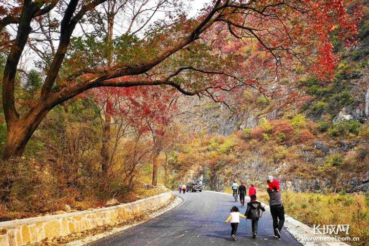 涉县庄子岭风景区平坦的道路上,游人来来往往。