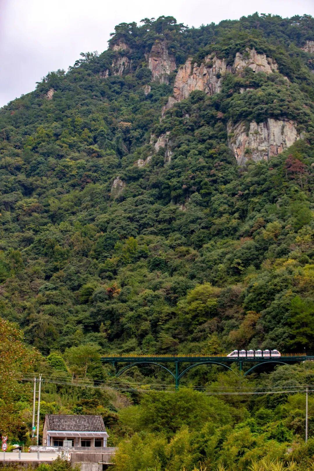 宁波这条盘山公路美得醉人!头上开着小火车,还有色彩斑斓的水库湿地!