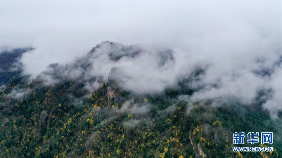 (美丽中国)(3)扎尕那雾境
