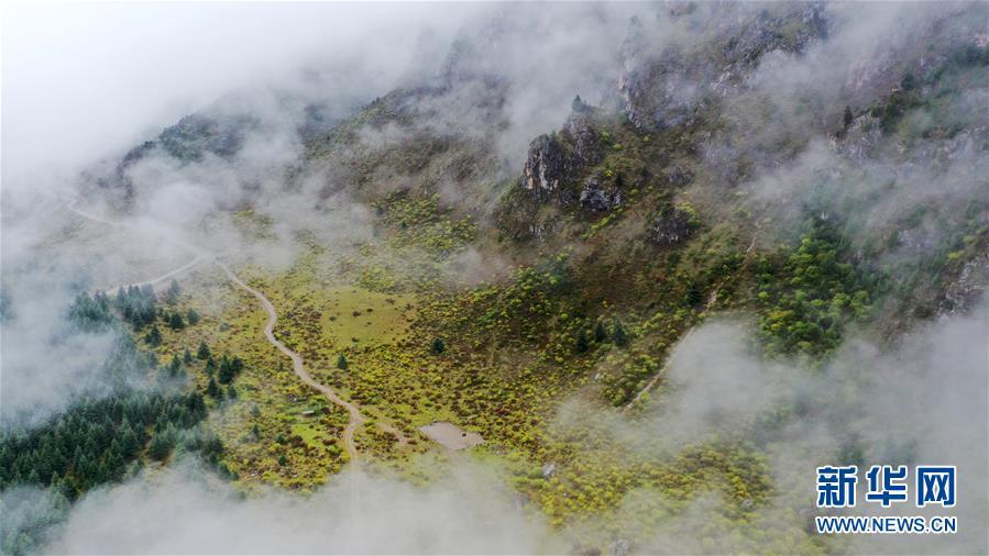 (美丽中国)(6)扎尕那雾境