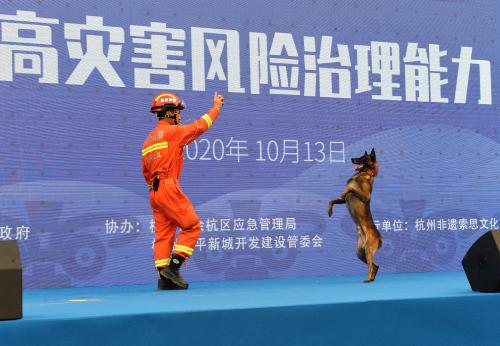 杭州市消防救援支队特勤大队训导员展示搜救犬服从技能。