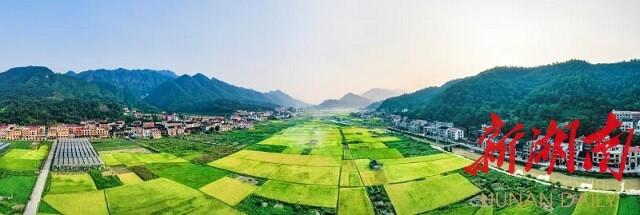 《叠翠流金》邹声爽拍摄于冷水江市三尖镇