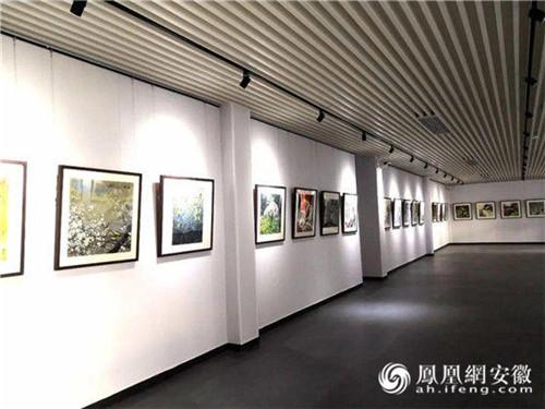 艺术界的饕餮盛宴:安徽安庆吴国亭美术馆即将开馆