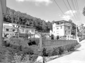湘西龙山县里耶镇云顶村,村民们修了洋房。图/受访者提供