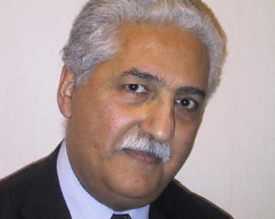 15日,来自英国的国际举联医疗委员会主席伊拉尼被任命为过渡主席。
