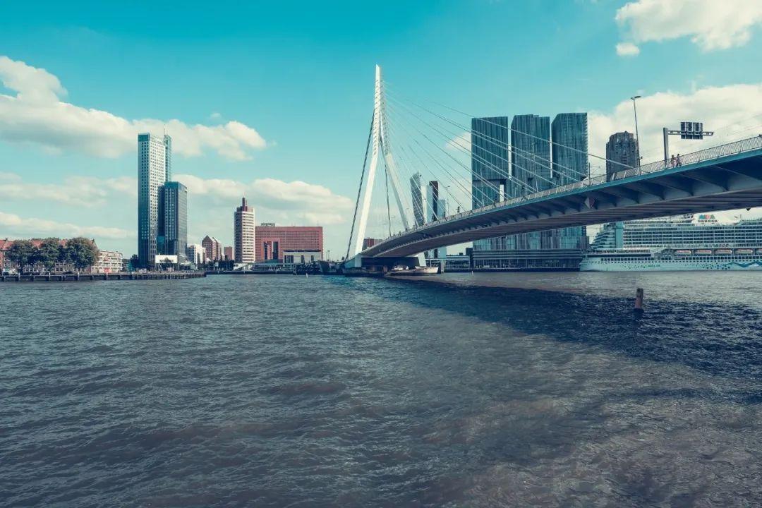 △ 鹿特丹的地势十分之低/unsplash