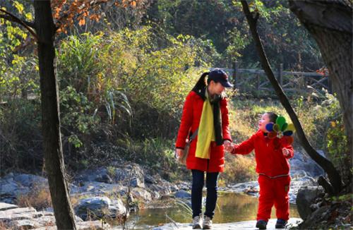 免门票福利|重阳节陪父母来西九华山登高祈福 踏秋度假吧!