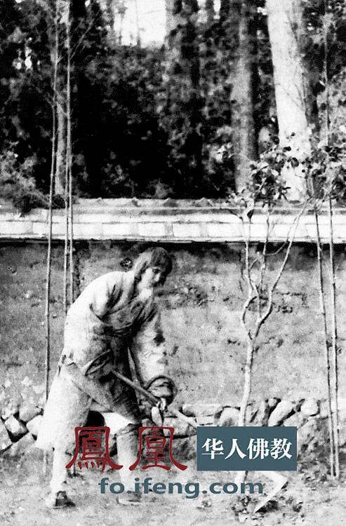 1924至1925年,虚云老和尚在云南昆明云栖寺植树时留影。(图片来源:凤凰网佛教 摄影:云居山真如禅寺)