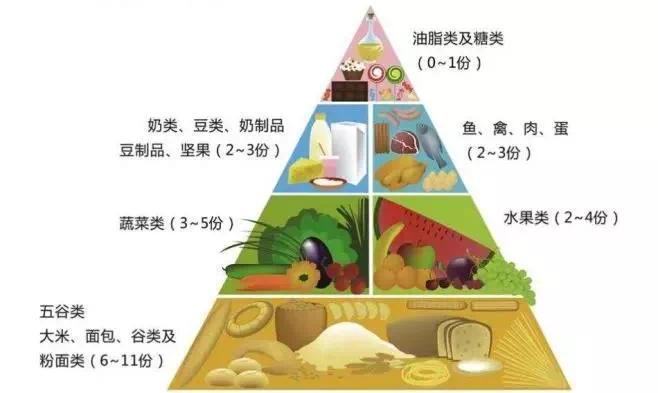 USDA健康膳食金字塔,图片来源 tupian.baike