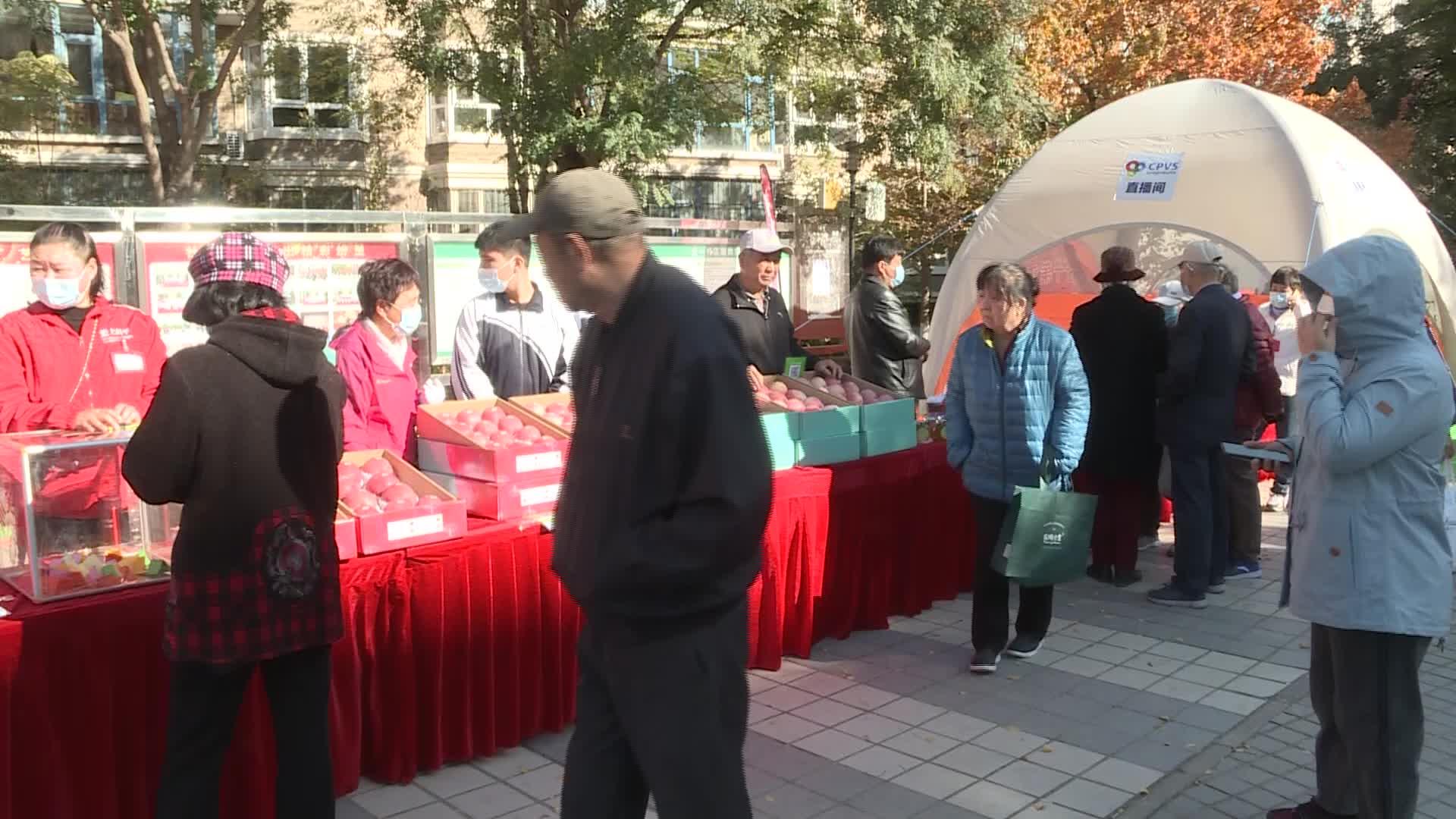 昌平苹果进社区掀起昌平第十七届苹果文化节系列活动高潮