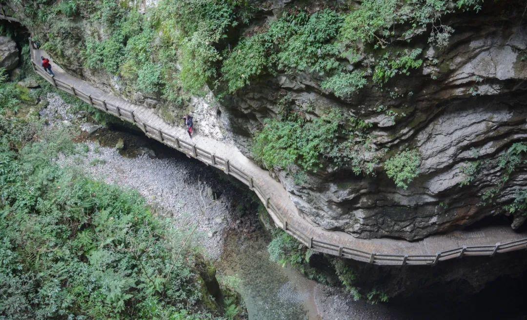 你可以沿着石梯,在云雾缭绕、水溶石缝、逶迤栈道间,细细领略龙水峡地缝的壮观与奇特;