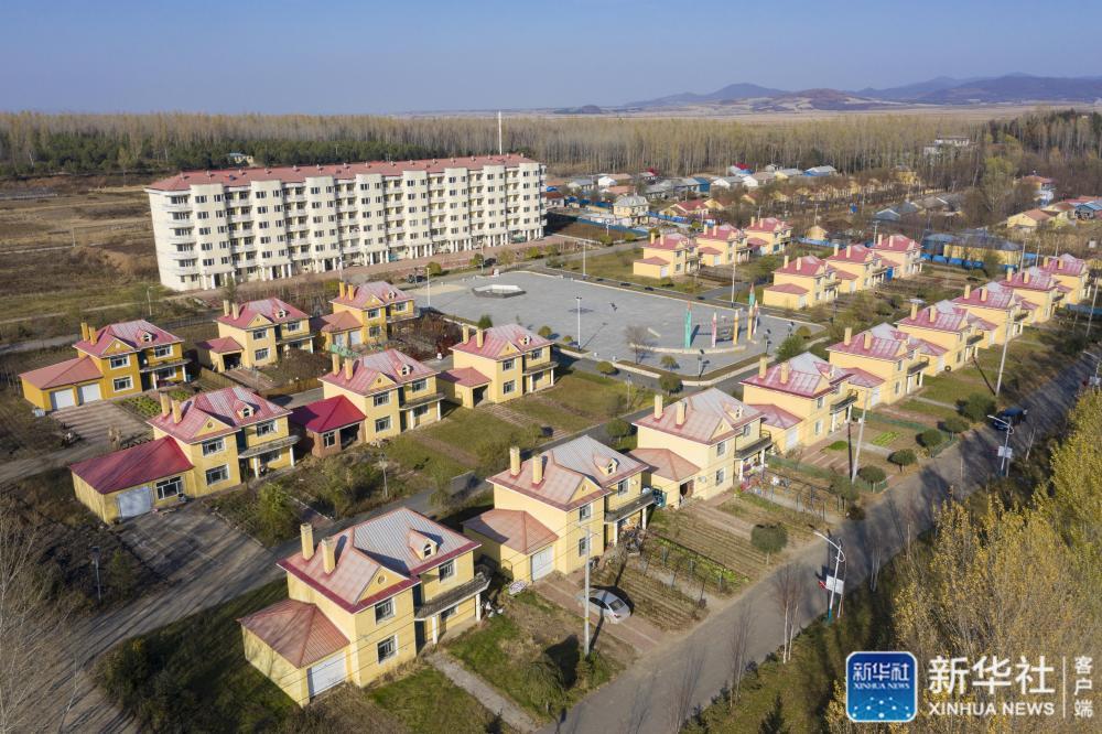黑龙江省尚志市元宝镇元宝村的楼房和别墅(10月20日摄,无人机照片)。谢剑飞 摄