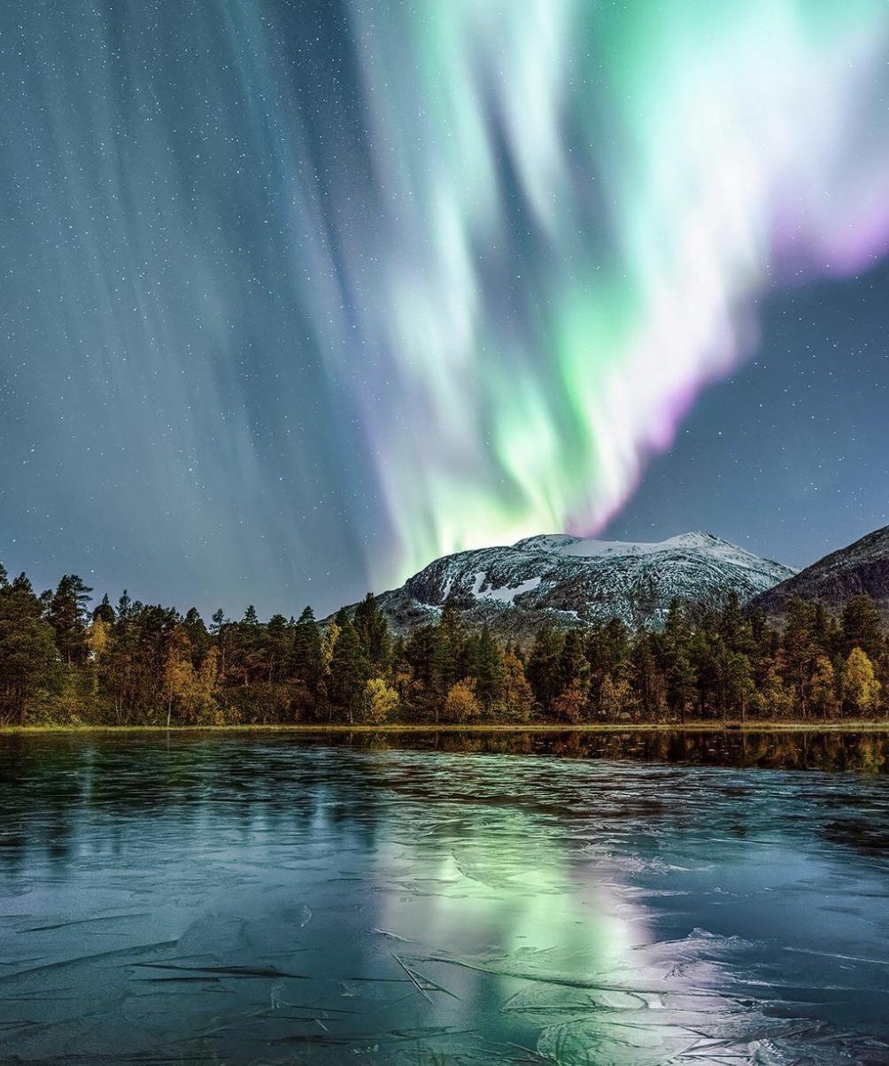 在瑞士北部拉普兰拍摄到的极光。   Visit Arctic Europe 官网 图