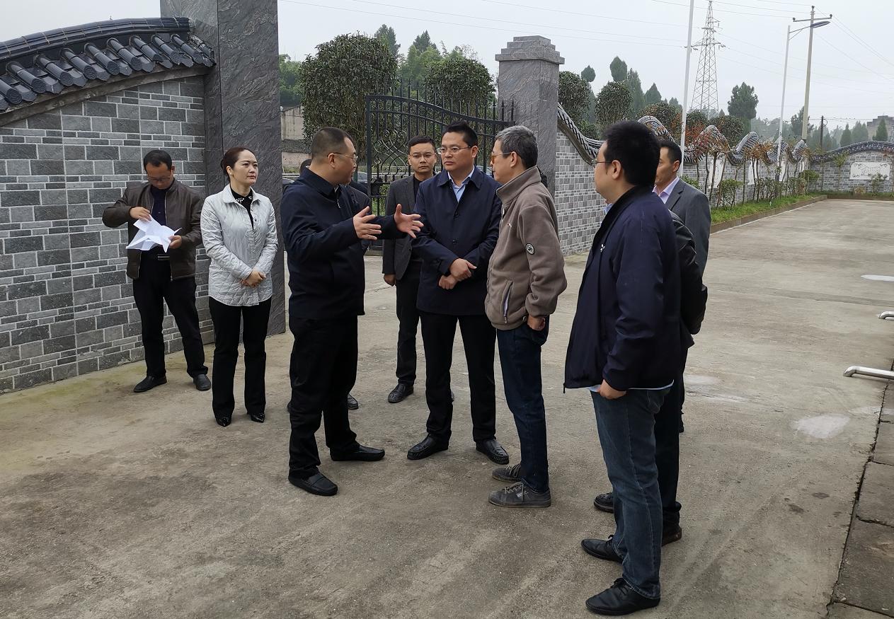 渠县县委副书记张宇科督导调研乡镇污水处理设施建设工作
