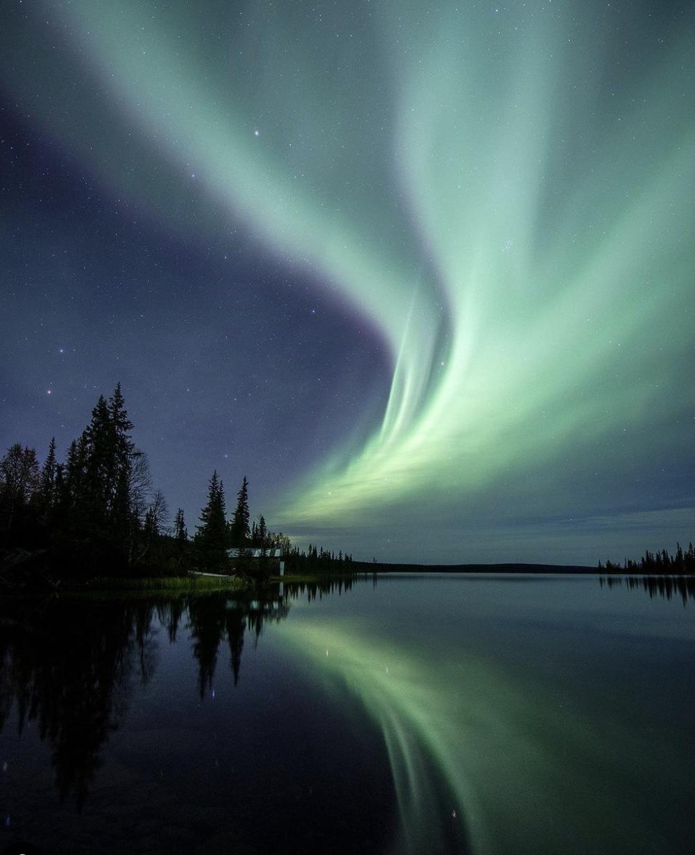 通常人们认为极光是绿色的,像绸带一样飘动在夜空中。  Visit Arctic Europe 官网 图