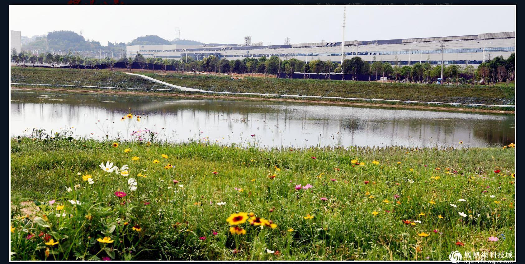 绵阳市高新区持续构建良好产业生态